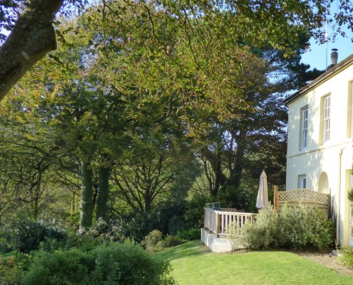Dennis House Back Garden